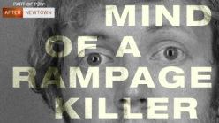 mind-rampage-killer-vi